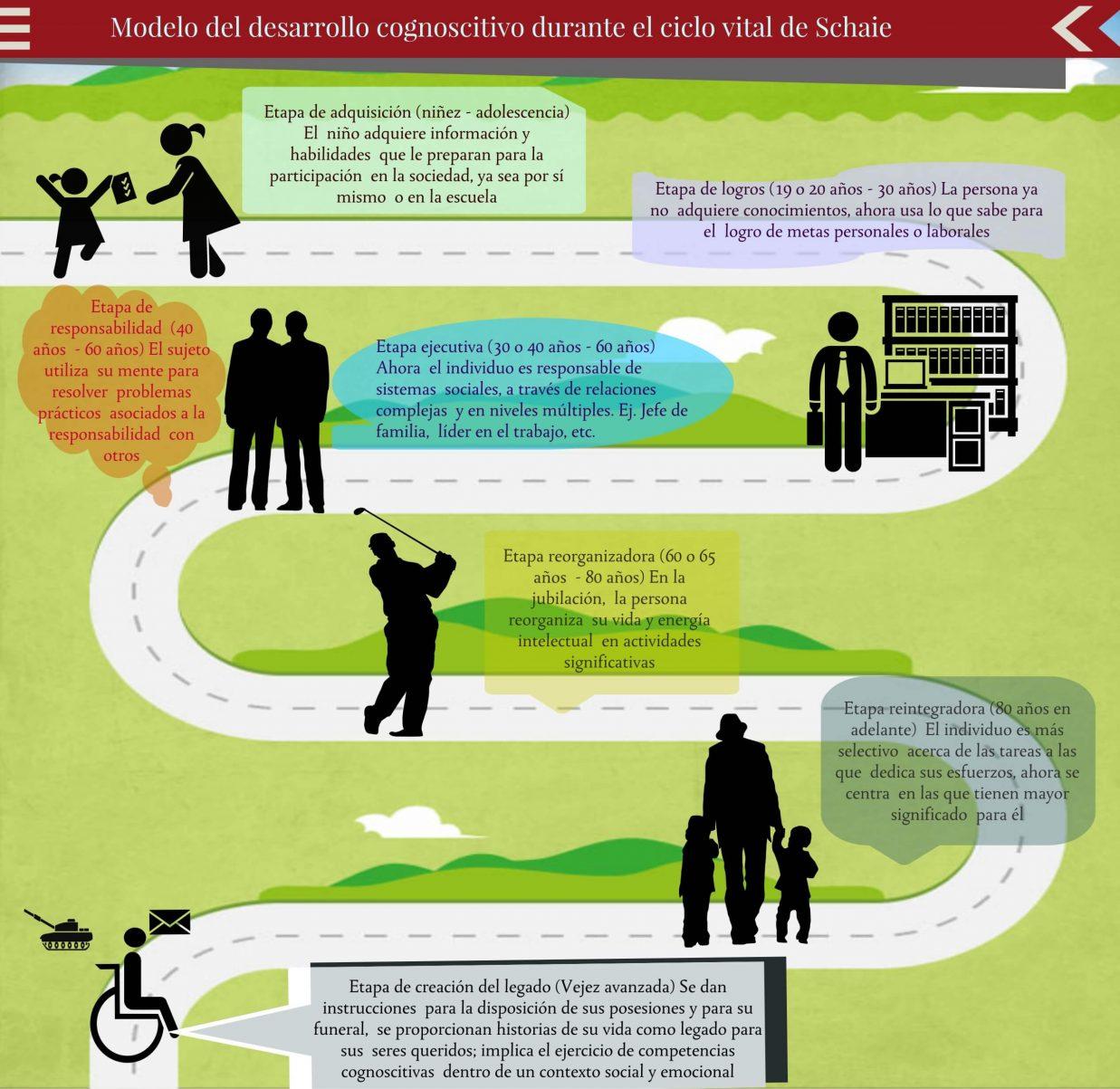 Infografia Modelo desarrollo cognoscitivo Shaie