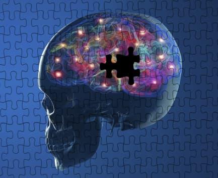 cerebro rompecabezas
